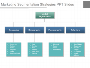 One marketing segmentation strategies ppt slides