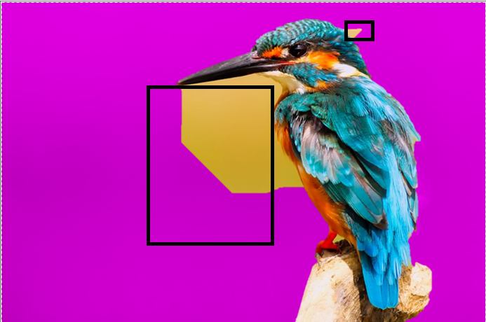 Automatic Selection of the Background ( bird)