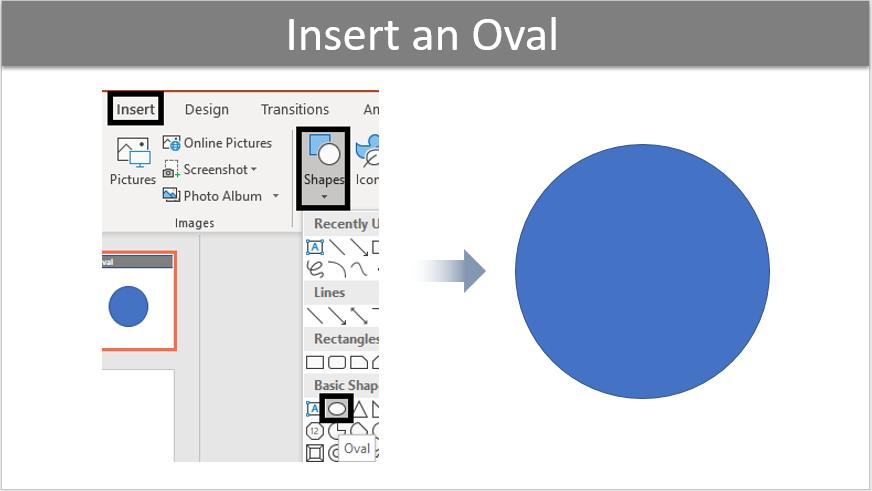 Insert an Oval