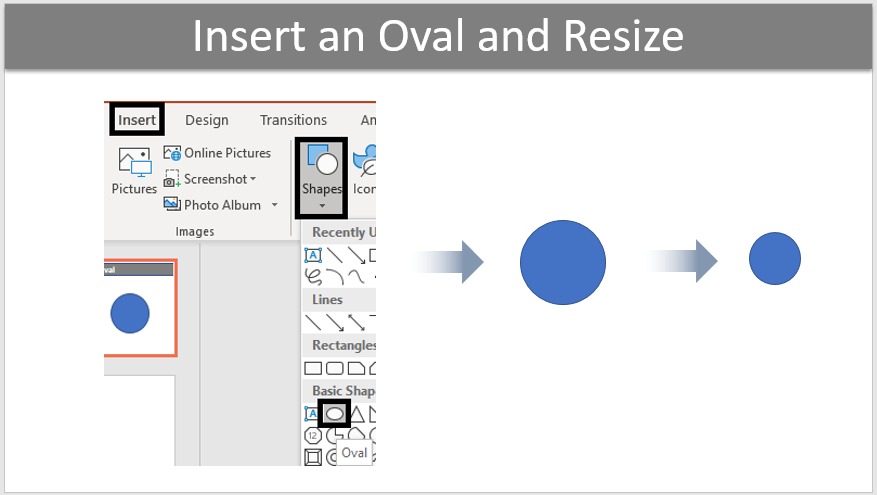 Insert an Oval and Resize