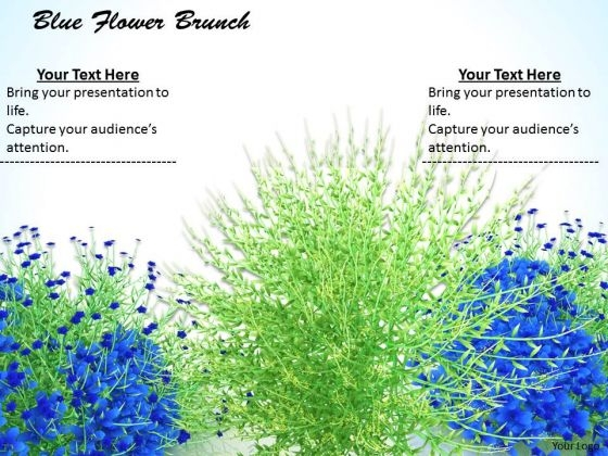 0814 Stock Photo Blue Flowers With Green Grass PowerPoint Slide
