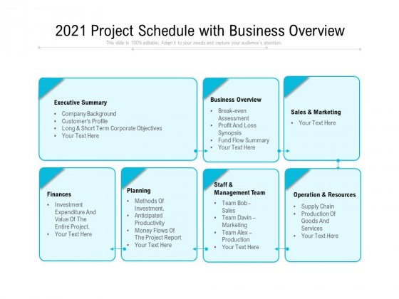 2021 Project Schedule With Business Overview Ppt PowerPoint Presentation Show PDF
