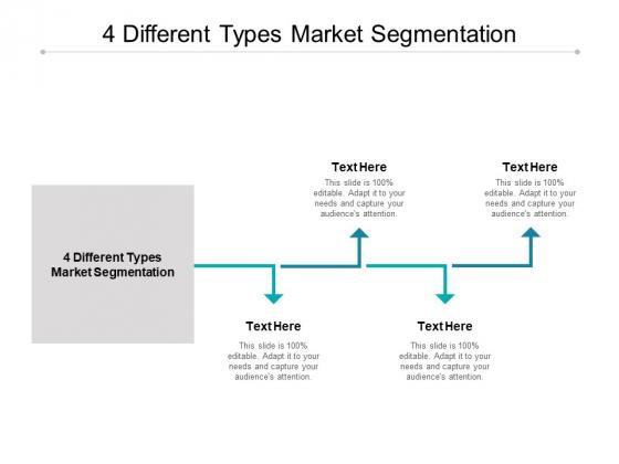 4 Different Types Market Segmentation Ppt PowerPoint Presentation Infographics Files Cpb