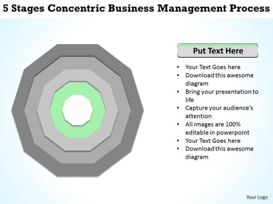 5 Stages Concentric Business Management Process Plan Form PowerPoint Slides