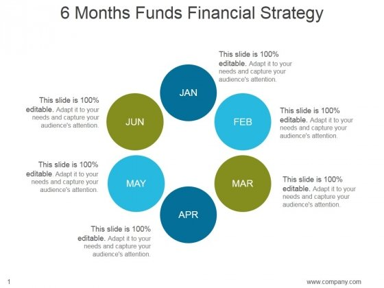 6 Months Funds Financial Strategy Ppt PowerPoint Presentation Example 2015