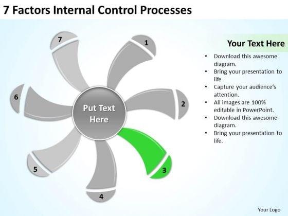 7 Factors Internal Control Processes Ppt Business Plan Formats PowerPoint Templates