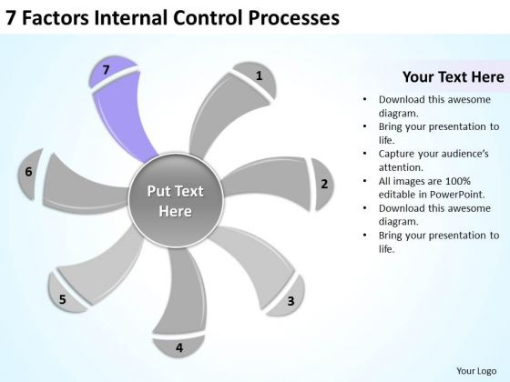 7 Factors Internal Control Processes Ppt Personal Business Plan – Personal Business Plan Template