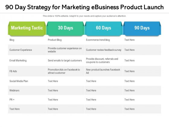 90 Day Strategy For Marketing Ebusiness Product Launch Ppt PowerPoint Presentation File Background Designs PDF