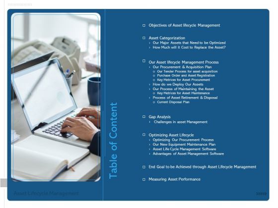 ALM Optimizing The Profit Generated By Your Assets Table Of Content Demonstration PDF