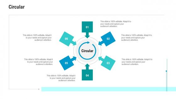 API Ecosystem Circular Brochure PDF