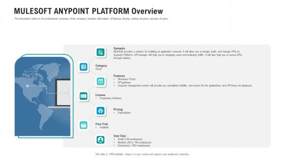 API Ecosystem Mulesoft Anypoint Platform Overview Icons PDF