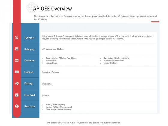 API Outline Apigee Overview Ppt Model Themes PDF