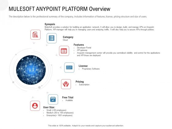 API Outline Mulesoft Anypoint Platform Overview Ppt Icon Example PDF