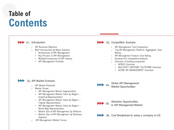 API Outline Table Of Contents Ppt Styles Design Ideas PDF