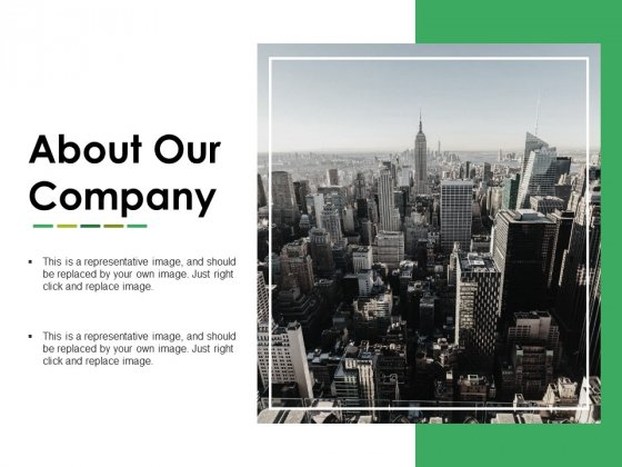 About Our Company Ppt PowerPoint Presentation Portfolio Deck