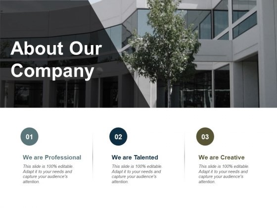 About Our Company Ppt PowerPoint Presentation Slides Layout