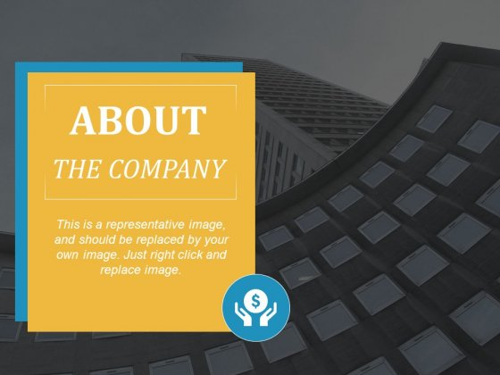 About The Company Ppt PowerPoint Presentation Layouts Microsoft
