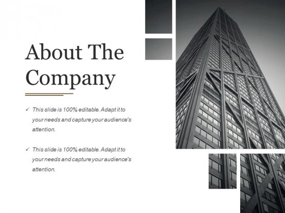 About The Company Ppt PowerPoint Presentation Portfolio Infographic Template