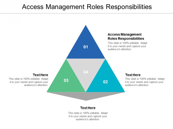 Access Management Roles Responsibilities Ppt PowerPoint Presentation Ideas Example Cpb