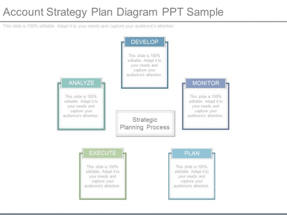 Account Strategy Plan Diagram Ppt Sample