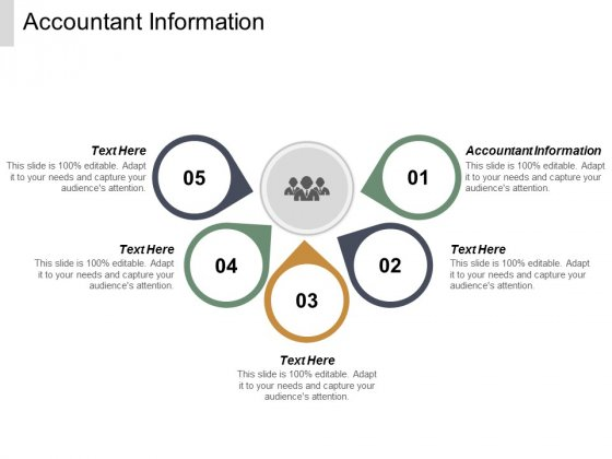 Accountant Information Ppt PowerPoint Presentation Model Clipart Images Cpb