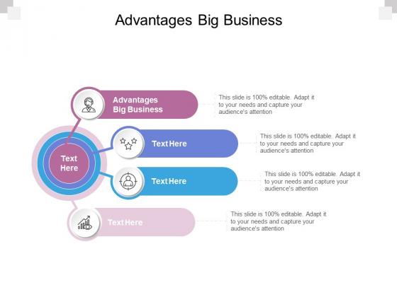 Advantages Big Business Ppt PowerPoint Presentation Show Portrait Cpb