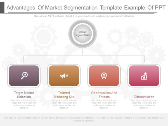 Advantages Of Market Segmentation Template Example Of Ppt