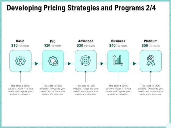 Advertisement Administration Developing Pricing Strategies And Programs Ppt Pictures Graphics PDF