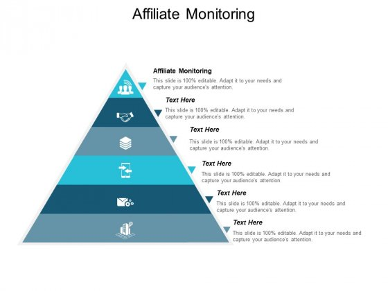 Affiliate Monitoring Ppt PowerPoint Presentation Infographic Template Vector Cpb