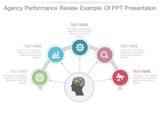 Agency Performance Review Example Of Ppt Presentation