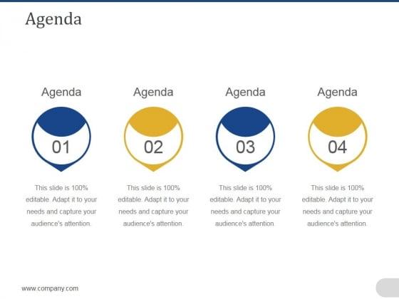 Agenda Ppt PowerPoint Presentation Portfolio Format
