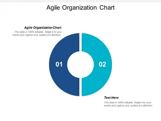 Agile Organization Chart Ppt PowerPoint Presentation File Sample Cpb