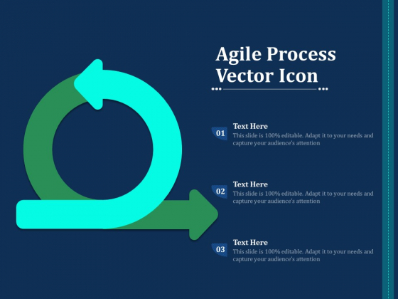 Agile Process Vector Icon Ppt PowerPoint Presentation Files PDF