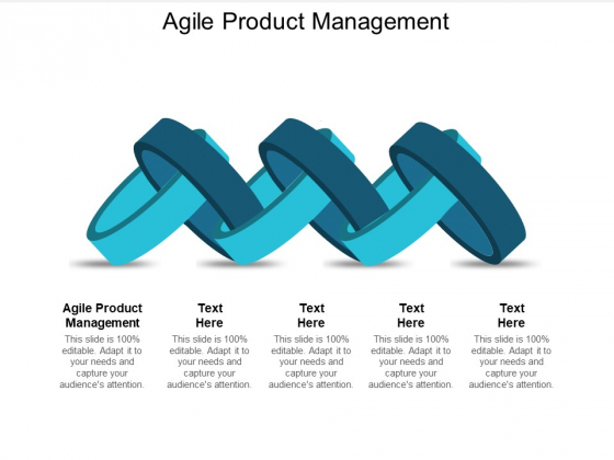 Agile Product Management Ppt PowerPoint Presentation Gallery Slides Cpb
