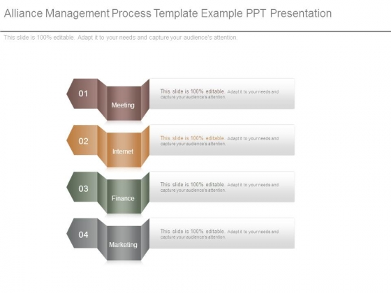 Alliance Management Process Template Example Ppt Presentation