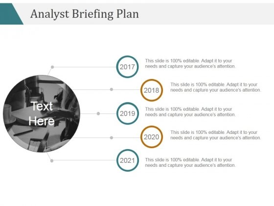 Analyst Briefing Plan Ppt PowerPoint Presentation Portfolio
