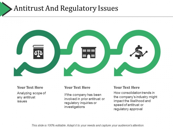 Antitrust And Regulatory Issues Ppt PowerPoint Presentation Icon Show