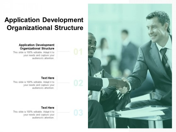 Application Development Organizational Structure Ppt PowerPoint Presentation Summary Examples Cpb Pdf