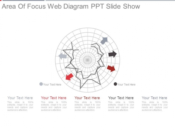 Area Of Focus Web Diagram Ppt Slide Show