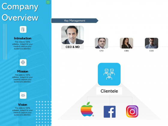 Assessing Synergies Company Overview Ppt PowerPoint Presentation Show Influencers PDF