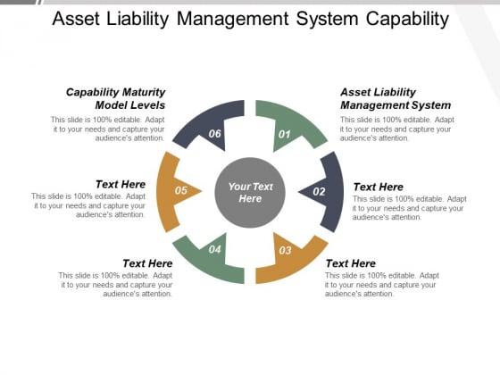 Asset Liability Management System Capability Maturity Model Levels Ppt PowerPoint Presentation Summary Microsoft