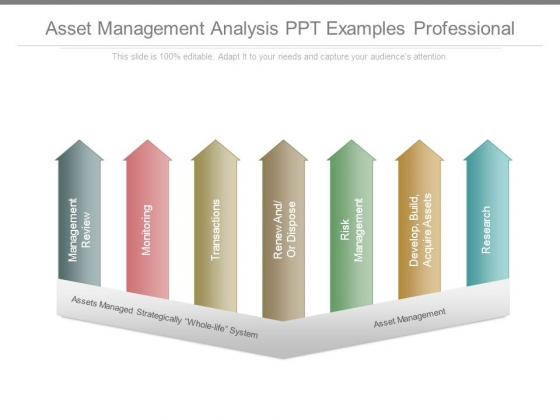 Asset Management Analysis Ppt Examples Professional