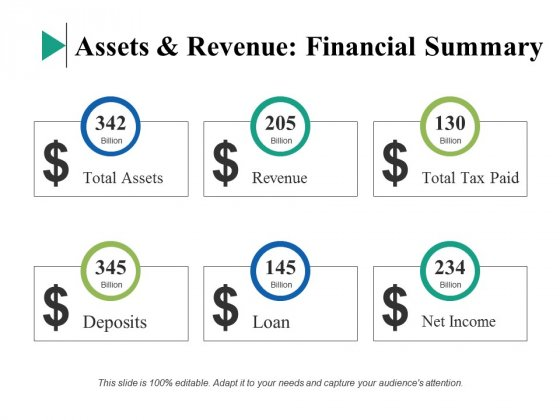 Assets And Revenue Financial Summary Ppt PowerPoint Presentation Infographics Demonstration