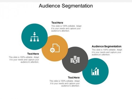 Audience Segmentation Ppt PowerPoint Presentation Model Example Cpb