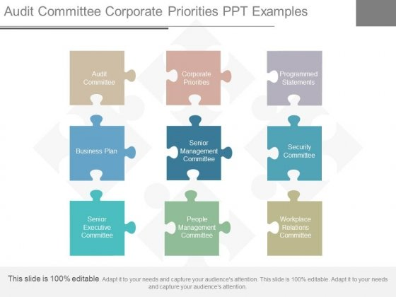 Audit Committee Corporate Priorities Ppt Examples