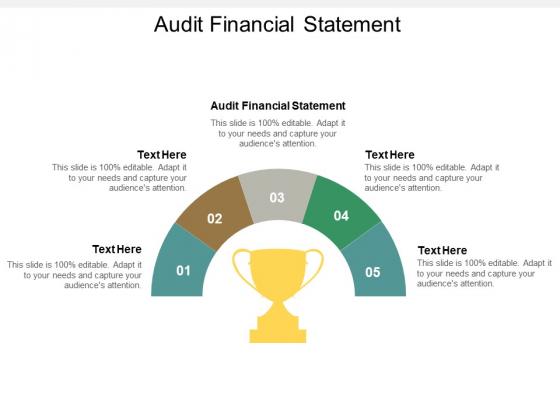 Audit Financial Statement Ppt PowerPoint Presentation Summary Brochure Cpb