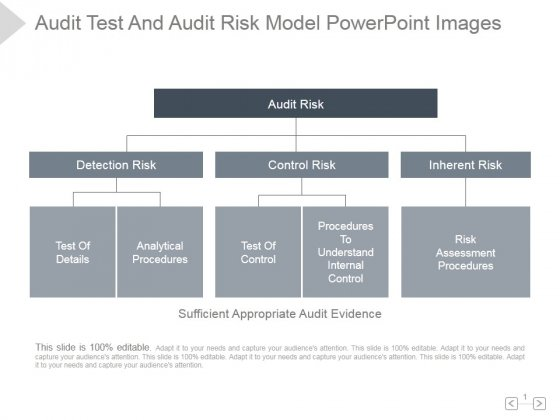 audit test and audit risk model ppt powerpoint presentation, Modern powerpoint