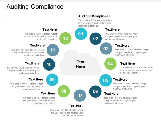 Auditing Compliance Ppt PowerPoint Presentation Summary Example Cpb