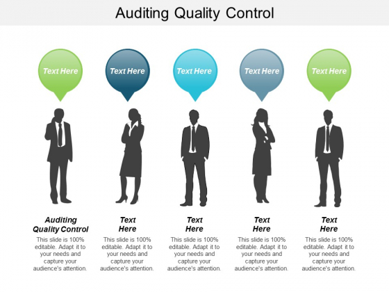 Auditing Quality Control Ppt PowerPoint Presentation Model Example Introduction Cpb