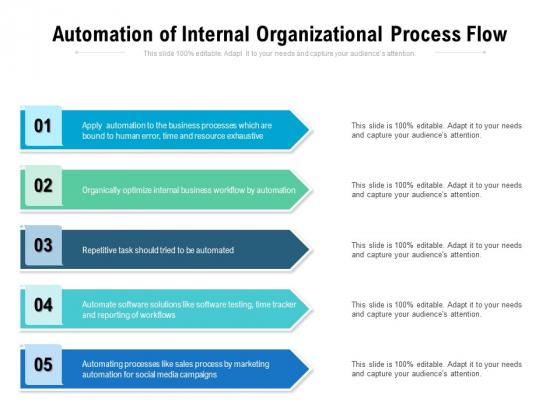 Automation Of Internal Organizational Process Flow Ppt PowerPoint Presentation Portfolio Icons PDF